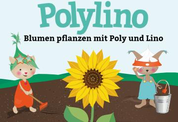 Blumen pflanzen mit Poly und Lino